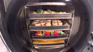 Freeze-Drying Various Foods - Time Lapse