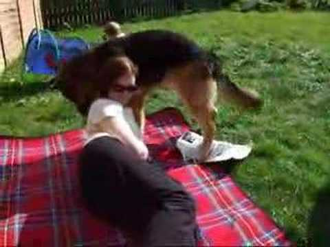 dog love from YouTube · Duration:  14 seconds
