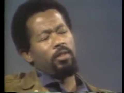 Black Liberation Theory  Eldridge Cleaver on the Definition of  PIGS