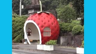 フルーツバス停.(2006.7.18) フルーツバス停 検索動画 2