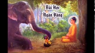 Bài Học Ngàn Vàng - HT Thích Thiện Hoa