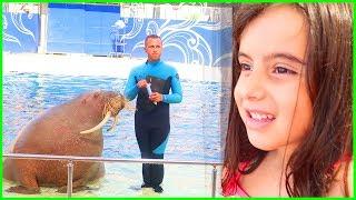 Rüya İlk Defa Yunus Balığı Gösterisi İzledik, Fok Balığının Şovu Bir Harikaydı l Çocuk Videosu
