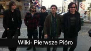 Wilki- Pierwsze Pióro (NOWOŚĆ 2011 MP3)