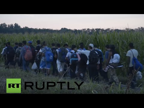 Serbia: Hundreds of hunger-striking refugees march toward the Hungarian border