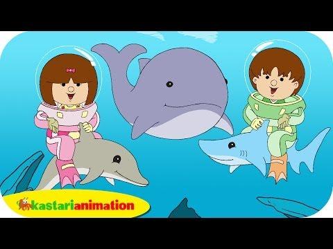 Kutahu Dunia Air (lumba lumba, hiu, paus) - Kastari Animation Official