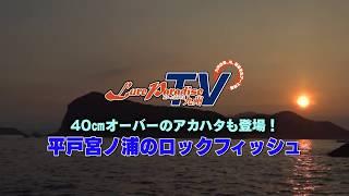 平戸宮ノ浦のロックフィッシュゲーム