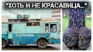 "✔️Реалити-шоу😎""Жизнь в России"" 🇷🇺/Reality show ""Life in Russia""."