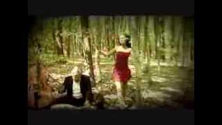 Langa - Za svobodo divjega srca