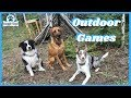 Outdoor Dog Training Games To Play This Summer!