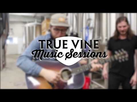 The Rocketboys - You and Everyone Else | True Vine Music Sessions
