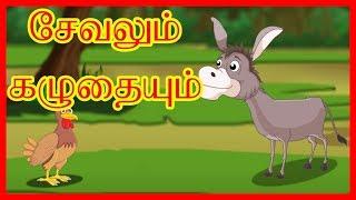 சேவலும் கழுதையும் | Rooster And The Donkey | Panchatantra Moral Stories for Kids | ChikuTV Tamil