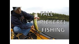 Fall Pickerel Fishing