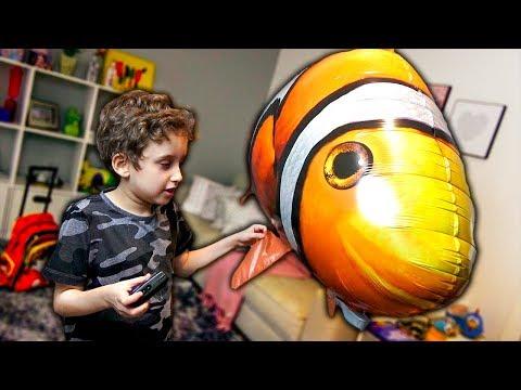 Balão Peixe de Controle Remoto para Crianças - Paulinho e Toquinho
