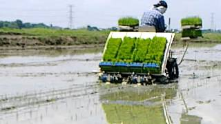 Iseki Rice Transplanting Machine
