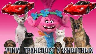 Тролли - Розочка учит транспорт и животных. Мультики для детей