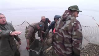 11 tonnes : la pêche miraculeuse