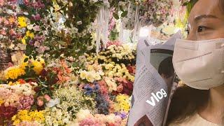 젊줌마 일상 브이로그7 (고속터미널 꽃시장, 노브랜드 …