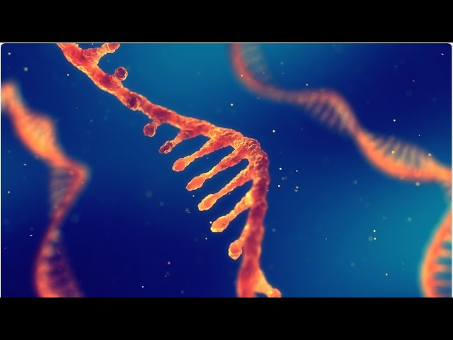 #266: mRNA's Message to the World