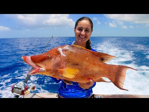 80 MILES Offshore for this TROPHY Fish! Catch and Cook Hogfish! West End, Bahamas