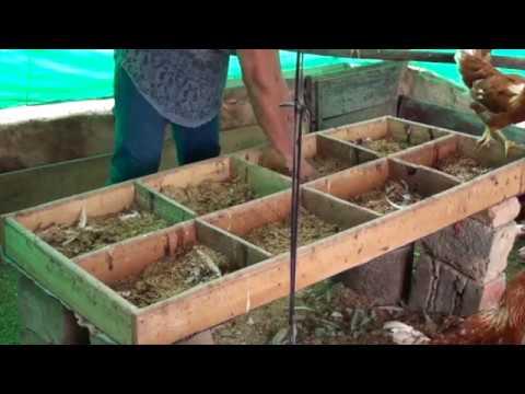Sistematización ASOMUNICIPIOS  (Catatumbo, provincia de Ocaña y sur del Cesar)