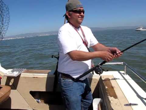 Bay area fishing youtube for Bay area fishing