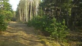 Stalag Luft III Part 4