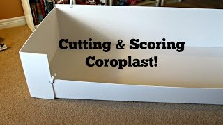 Coroplast Base: How To Cut & Score For C&C Cages