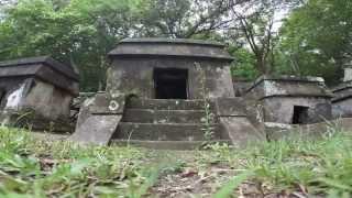 Descubre Más de Veracruz y sus zonas arqueológicas