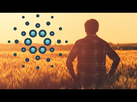 Cardano Exit Strategy, Millionaires Will Be Made In 2020!