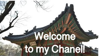 Chanel Introduction | Amelia Basia