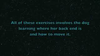 Упражнения для задних лап собаки!