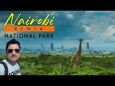Nairobi National Park Kenya Travel VLOG in Africa