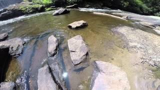 Water Moccasin Snake on Lake Sequoyah Dam