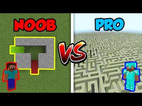 Minecraft NOOB vs. PRO: SECRET MAZE in Minecraft!