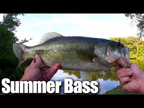 Catching Big Bass on Poppers - Cheap Fishing Lures VS. Name Brand