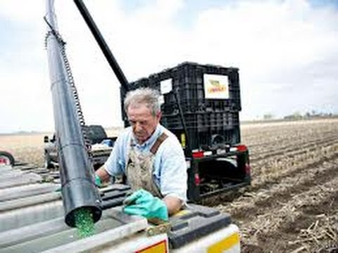 Organic Farmers Take On Monsanto