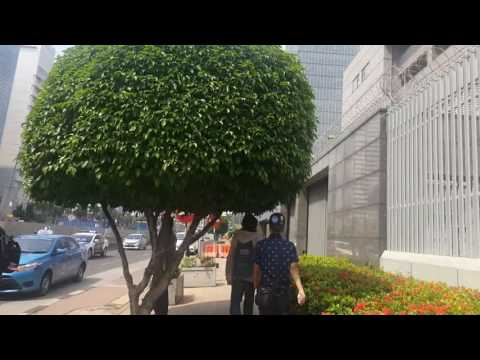 garydean | walk from Sarinah to Grand Indonesia, Jakarta
