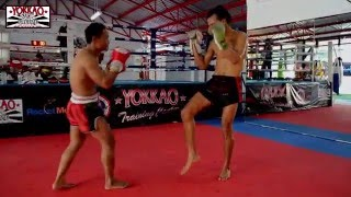 Saenchai Muay Thai sparring at the new YOKKAO Training Center Bangkok - Best Muay Thai Camp