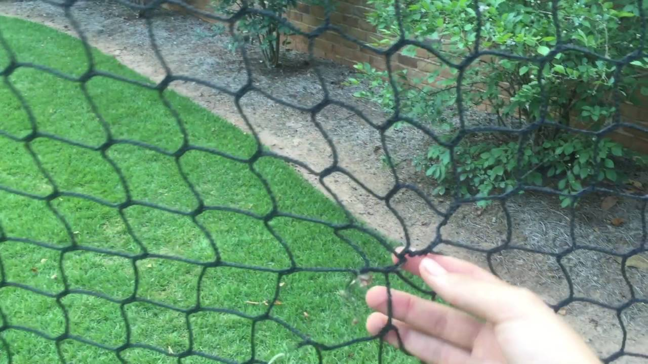 Ordinaire Backyard Batting Cage Review