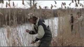 Охота на щуку.Джиг. Ультралайт.Наша рыбалка!(Видеожурнал о рыбалке.Охота на щуку.Сайт о рыбалке: Русская рыбалка http://ribalka-rf.ucoz.com/, 2013-01-08T13:33:34.000Z)