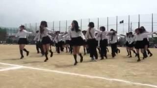 泉大津高校体育祭 青団 thumbnail