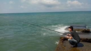 рыбалка в сочи,мзымта.истя,волга,терек,ока,десна и т.д......