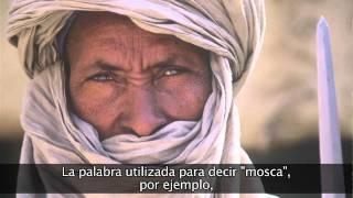 La lengua tamasheq