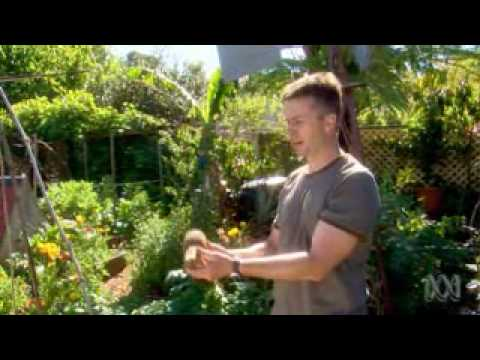How to Create  a Beautiful Edible Landscape - Tim Robson On Gardening Australia