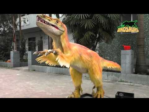 Animatronic Bambiraptor