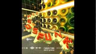 Fungus Funk - Acid `n´ roll