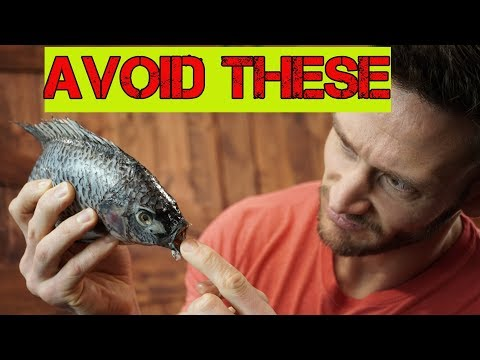 Keto Diet Fish | WORST Fish To Eat On A Ketogenic Diet | Keto Food Advice