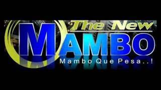the new mambo te quiero porque eres asi