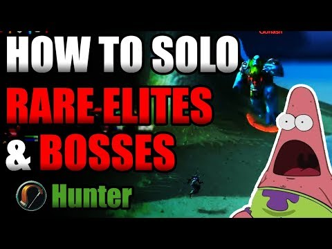 How To Solo Rare Elites & Bosses On A Hunter