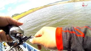 ตกปลาช่อนและชะโดEPที่เขื่อนกระแก่งกระจานBY Yod911